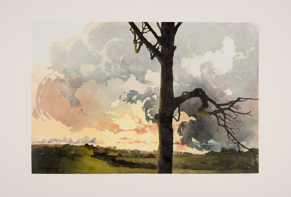 How it s made reduction linocut my way laura boswell s for Making prints of paintings